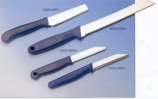 Carving knives (other)